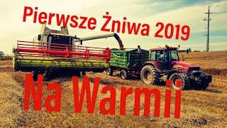 Pierwsze Żniwa 2019 Na Warmii/Gr.Stabrowscy/Claas Tucano 440/MAXXUM 140