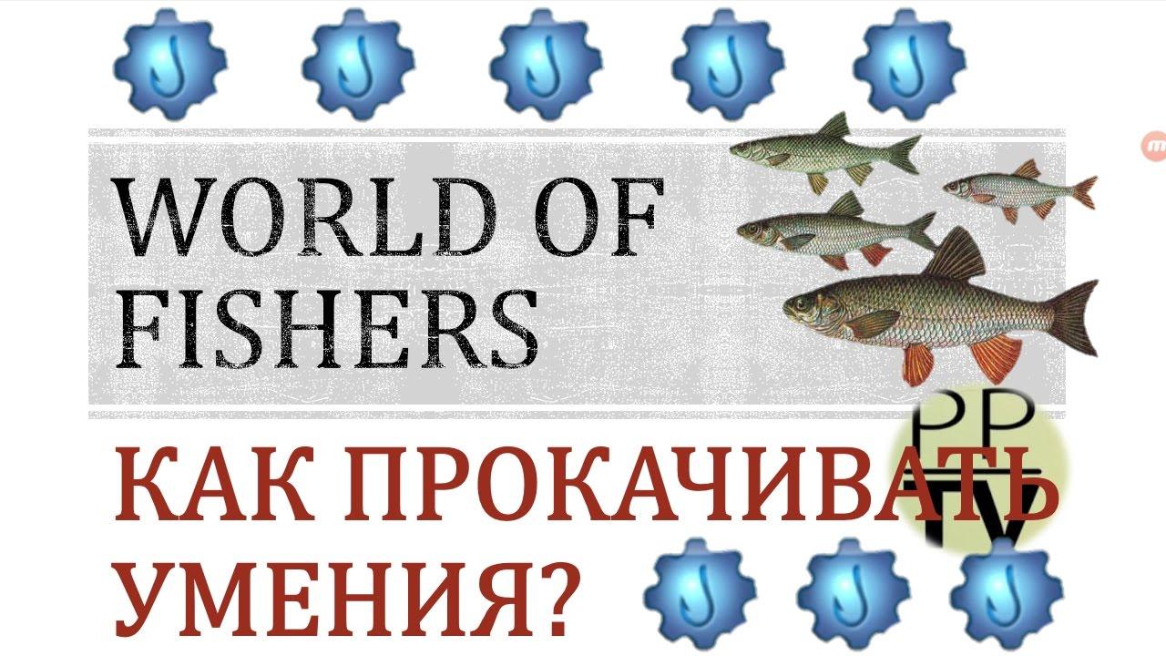 world of fishers куда вводить коды