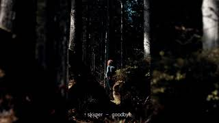 skyper - goodbye