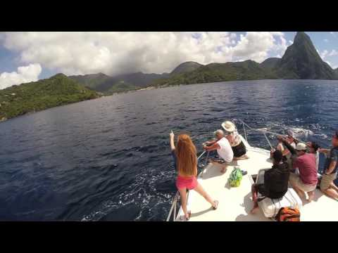 Travel Tip: See Best of St Lucia in 1 Day ! Amazing Beach, Waterfalls, Volcano.