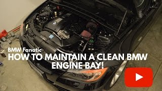 How To Maintain A Clean BMW Engine Bay!