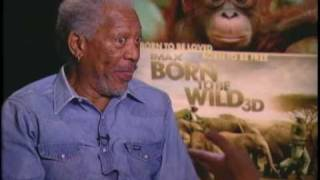 "Morgan Freeman Talks About ""Born to Be Wild 3D"""
