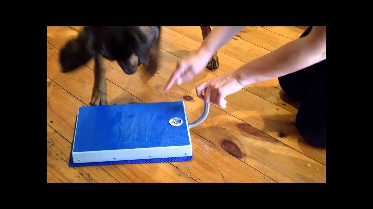 Digger Dog Nail File - YouTube