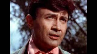 Gata Rahe Mera Dil - Harmonica - A Tribute to Dev Anand