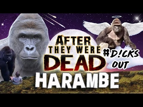 HARAMBE - AFTER They Were DEAD