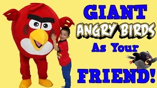 having a giant angry bird as your best friend kids playtime fun ckn toys