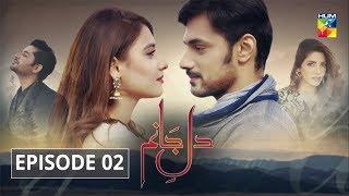 Dil e Jaanam Episode 2 HUM TV Drama