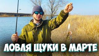 Рыбалка 2020 Ловля щуки весной ЩУКА ПРОСНУЛАСЬ Ловля щуки на спиннинг ЩУКА атакует под берегом