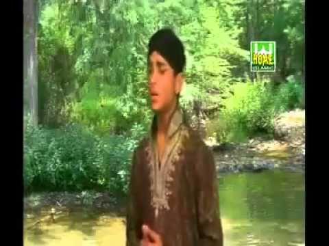 kaash mere pankh hote मै एक बारह साल के लड़की हूँ। लड़की होने के नाते मेरे उपर बहुत  पाबन्दी होती है। मेरे कहीं जाने पर बहुत सारे प्रश्नों का.