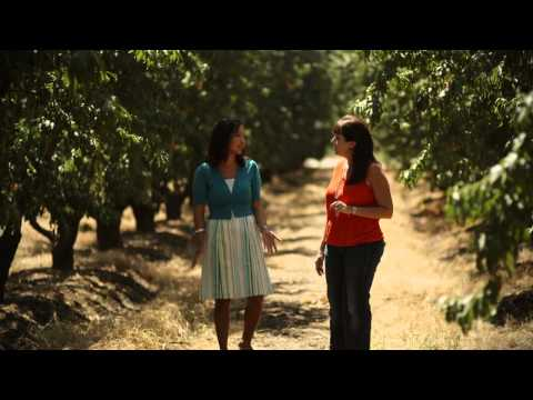 What Do You Want to Know About GMO Food? Environmental Impacts