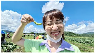A Day at an Edamame Farm, from Sprout to Export-Ready🌱
