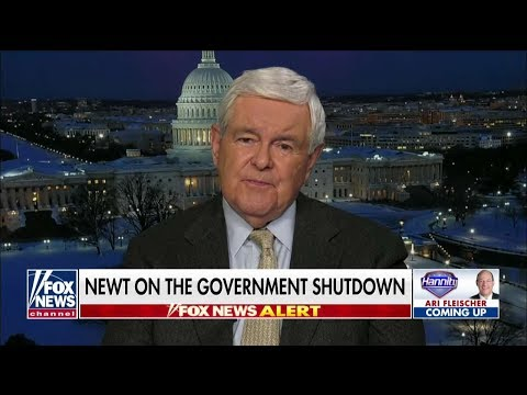 Gingrich on How Trump Can 'Beat' Pelosi, Left-Wing Democrats on Shutdown, Border Security Funding