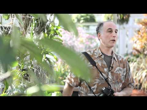 Garden Photo Tips with Rich Pomerantz — Macro Photography