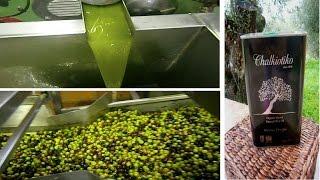 Как производят оливковое масло?/Производство оливкового масла. Греция (Mila MyWay)(Производство оливкового масла. В видео я покажу основные этапы производства оливкового масла: от фазы очищ..., 2014-12-02T06:30:01.000Z)