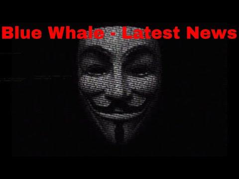 Blue Whale নিয়ে কিছু কথা!! যা আজ পর্যন্ত ৯০% মানু্ষ জানে ই না!!