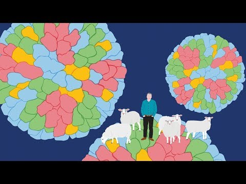 Improving animal health to help humans