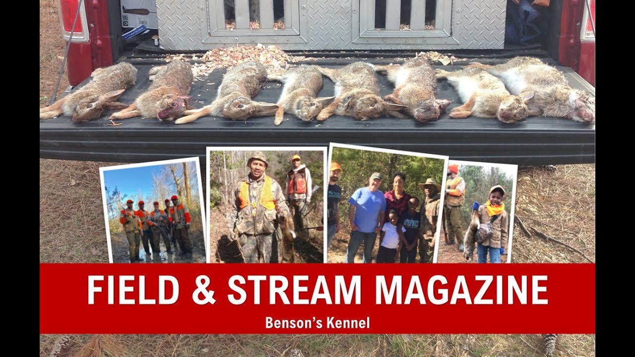 The Swamp Runners   Field and Stream   Part I   Benson's Kennel
