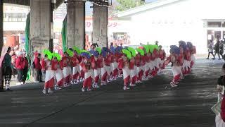 第一回よさこい東海道沼津祭りin沼津港 第一市場 つる姫さんの演舞。
