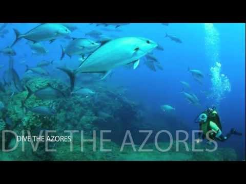 Dive in the Azores
