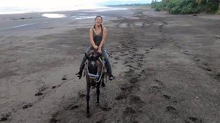 """ Montezuma "" Costa Rica VLOG episode 4 - Horseback Riding & Crocodiles"