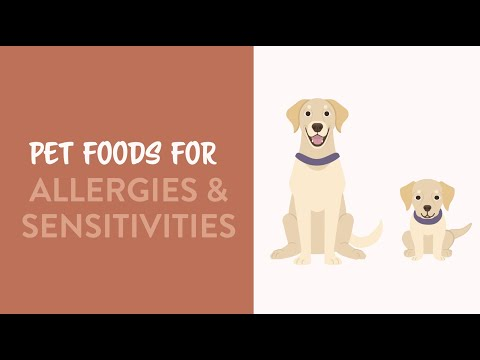 Diets for Dogs with Allergies & Sensitivities   Earthborn Holistic Pet Food