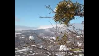 Гора Демерджи , зима 2010 .