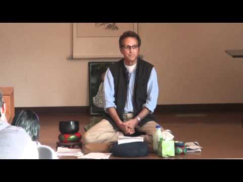 Dharma Talk Insight Meditation - Howard Cohn