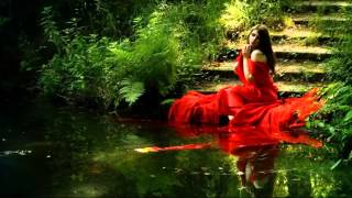 Doua chitare  - Armando Sciascia