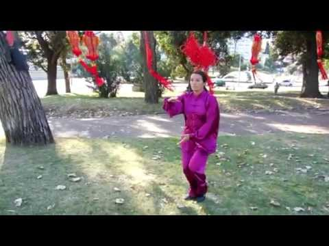 Dia Internacional del Tai Chi 2015 (Montevideo-Uruguay)