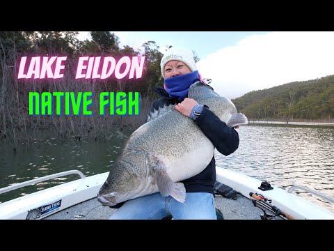 Lake Eildon Natives
