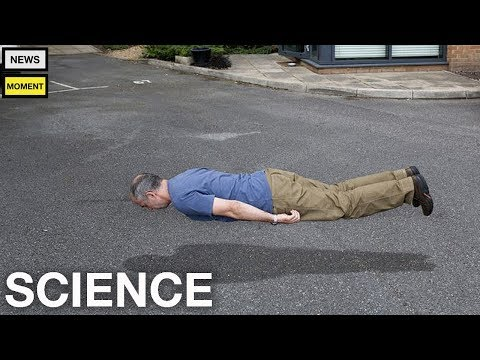 Man With Alzheimer's Starts Floating Because He Forgot Gravity Exists   News Moment