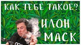 Илон Маск курит травку (русская озвучка)