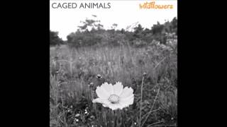 caged animals hold on we're going home