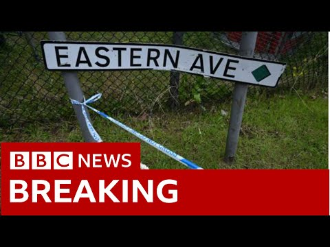 Essex lorry deaths: 39 bodies found in shipping container -