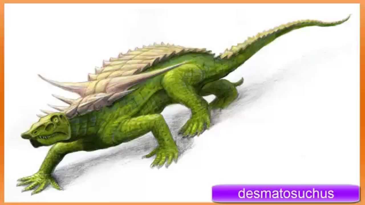 Desmatosuchus | Ancient Animals Wiki | FANDOM powered by Wikia