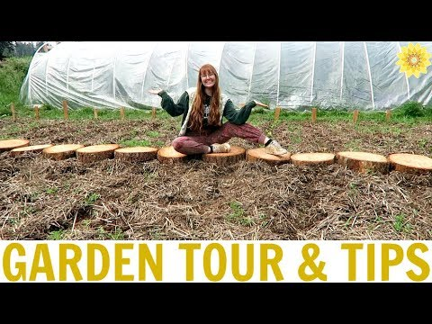 MY GARDEN TOUR + TIPS   GARDENING 101
