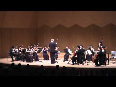 弦楽のためのセレナード ホ長調 Op.22 第5楽章