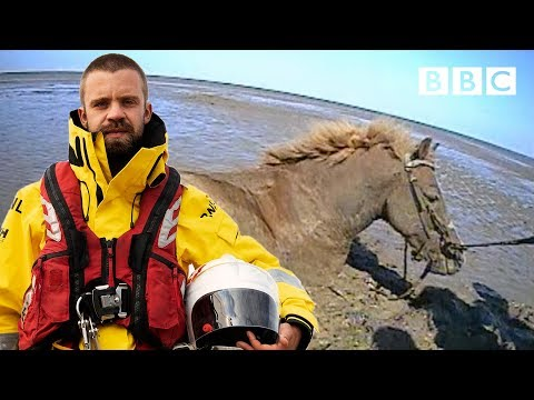 How do you save a trapped horse from drowning? | Saving Lives At Sea - BBC