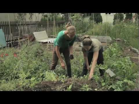 Faktor 5 Publikums-Preis 2012 - URBAN AGRICULTURE NETZ BASEL