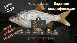 Русская рыбалка 4 - река Сура - Плотва задание квалификации карпфишинг 3-1