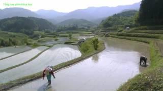 Khám phá vùng đất nông nghiệp Nhật Bản - Satoyama