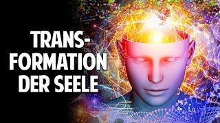 Wissenschaft & Spiritualität - Die Transformation der Seele