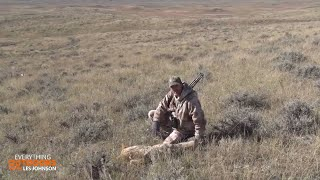 Calling Multiple Coyotes After a Missed Shot!