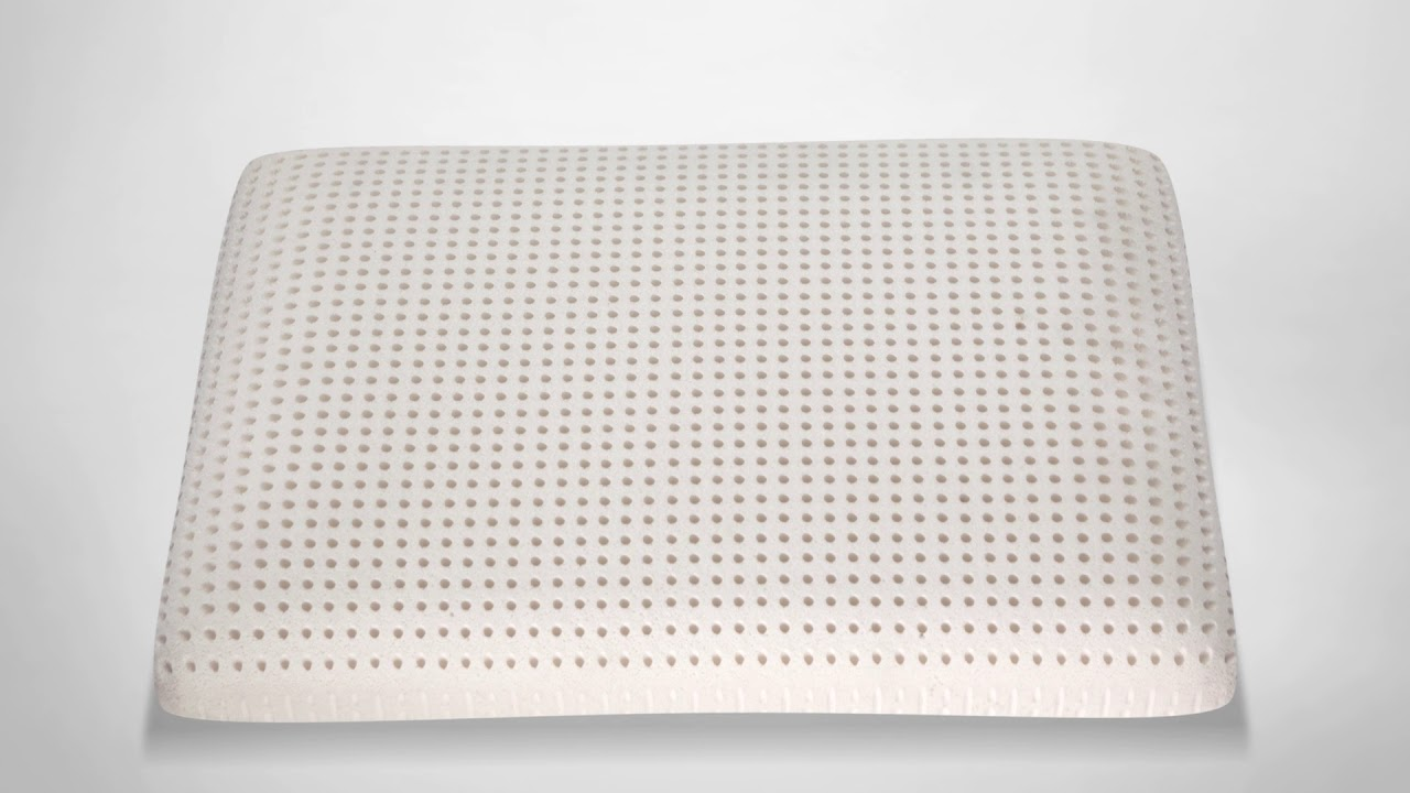 com mite dust goodream talalay resistant dp amazon pillow hypoallergenic heavy l hard and latex