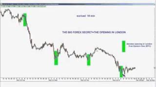 The Biggest Secret In Forex Trading - Larry Pesavento, TFNN.com