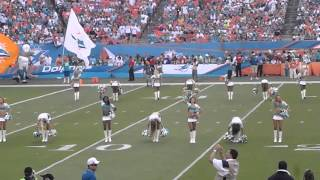 Miami Dolphins Cheerleaders Dance to Fight Song 11/24/13