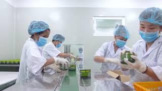 Dây chuyền sản xuất Mỹ phẩm Cao Cấp AIA  - Nhà máy sản xuất mỹ phẩm Nhật Việt Cosmetics