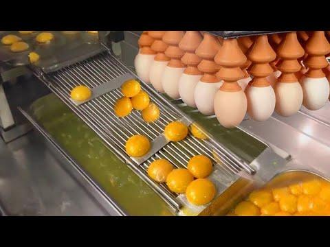 شاهد كيف يتم تصنيع البيض داخل المصانع العملاقة .. مشاهد مذهلة ستراها لاول مرة  - نشر قبل 3 ساعة