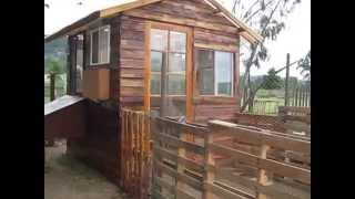 Northern California Chicken Coop Mansion - Pallets Recycled Materials