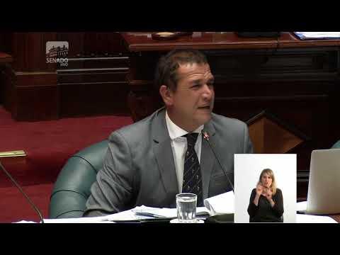 Sesión de la Camara de Senadores en directo   07 02 2018   República Oriental del Uruguay   YouTube